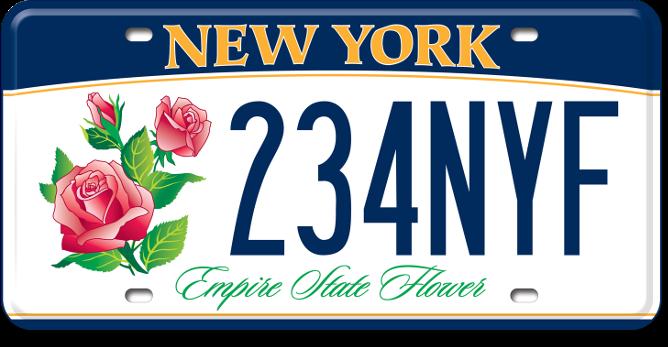 New York DMV Empire State Flower in 2020 Custom plates