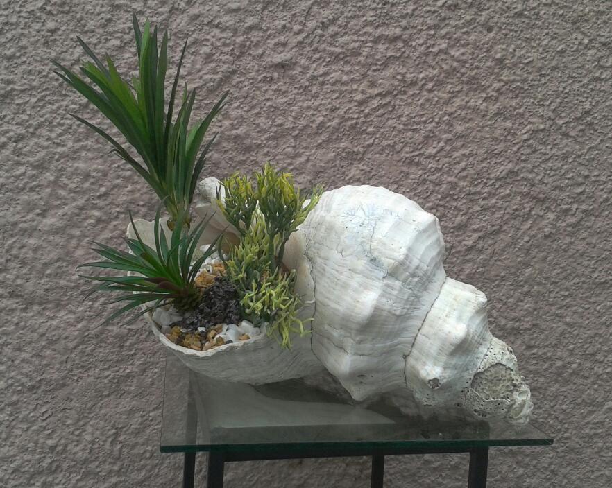 Maceta caracol natural cortado con plantas artificiales y - Macetas de terracota ...