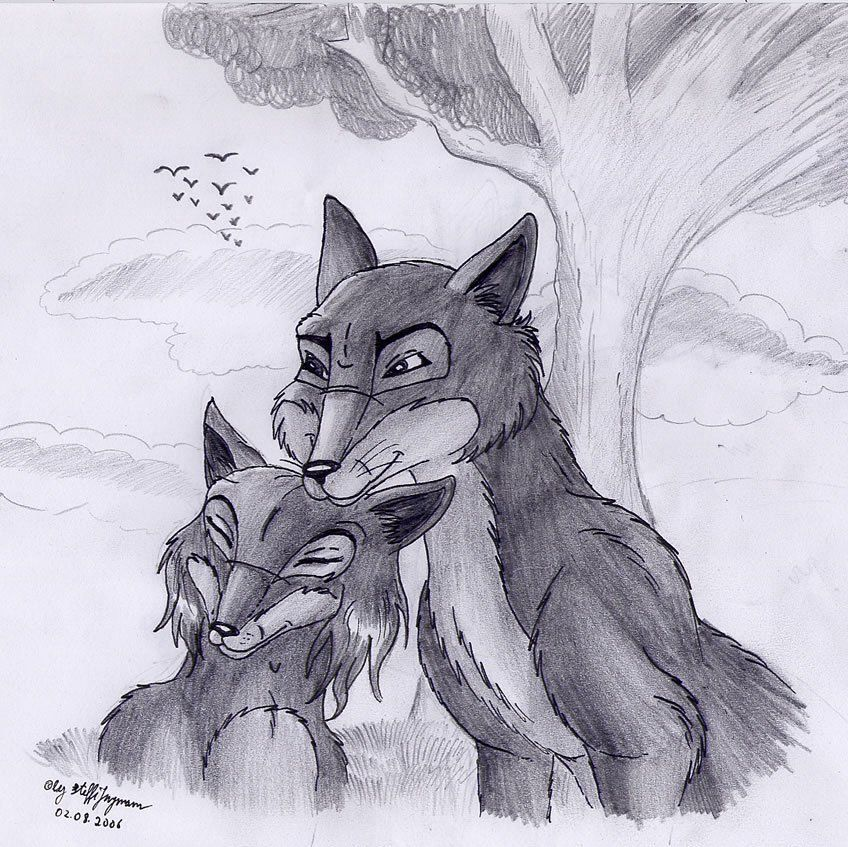 Fox and Vixen by FaelisSkribblekitty on DeviantArt