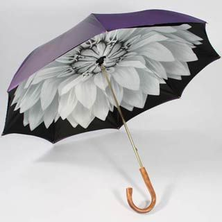 ILlesteva umbrellas . ~hand painted and fab. Showers always brings flowers