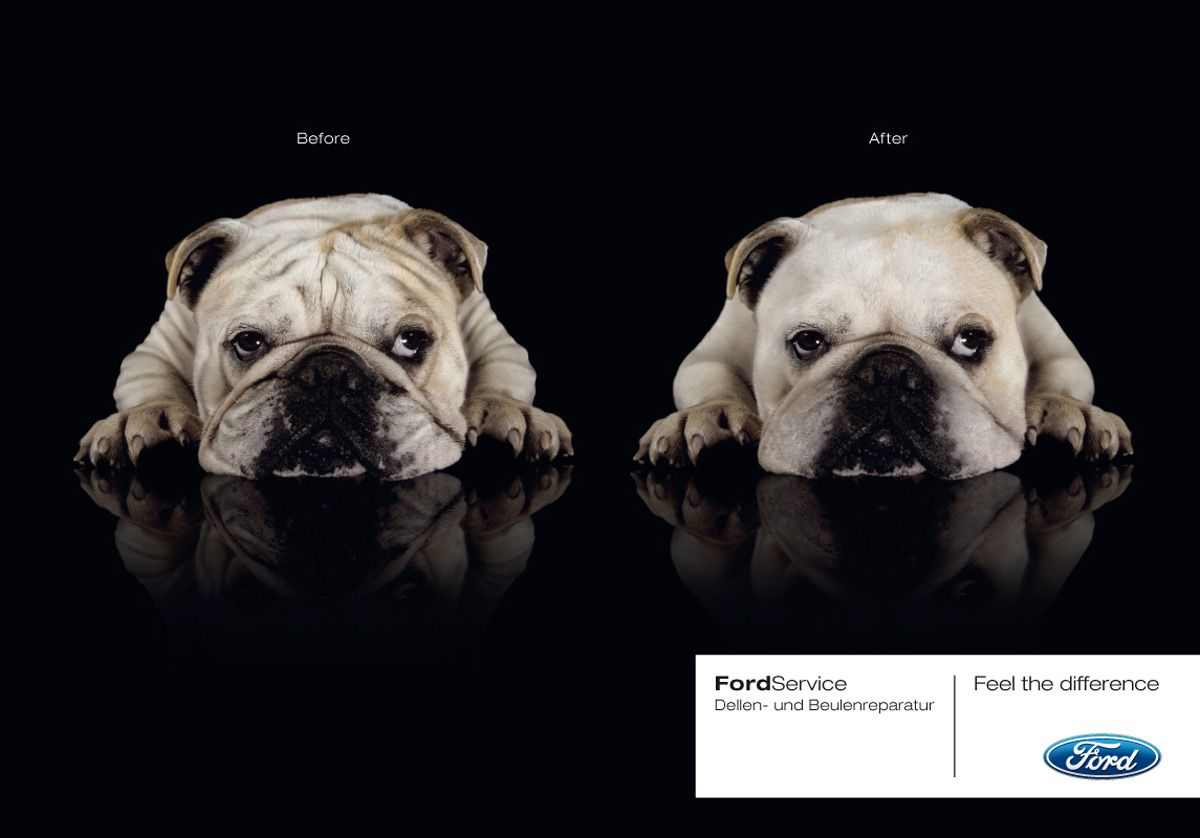 protection vision in ads Google Search Bulldog
