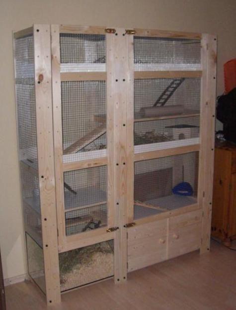 Abgeschlossene Projekte Kaninchengehege Kaninchen