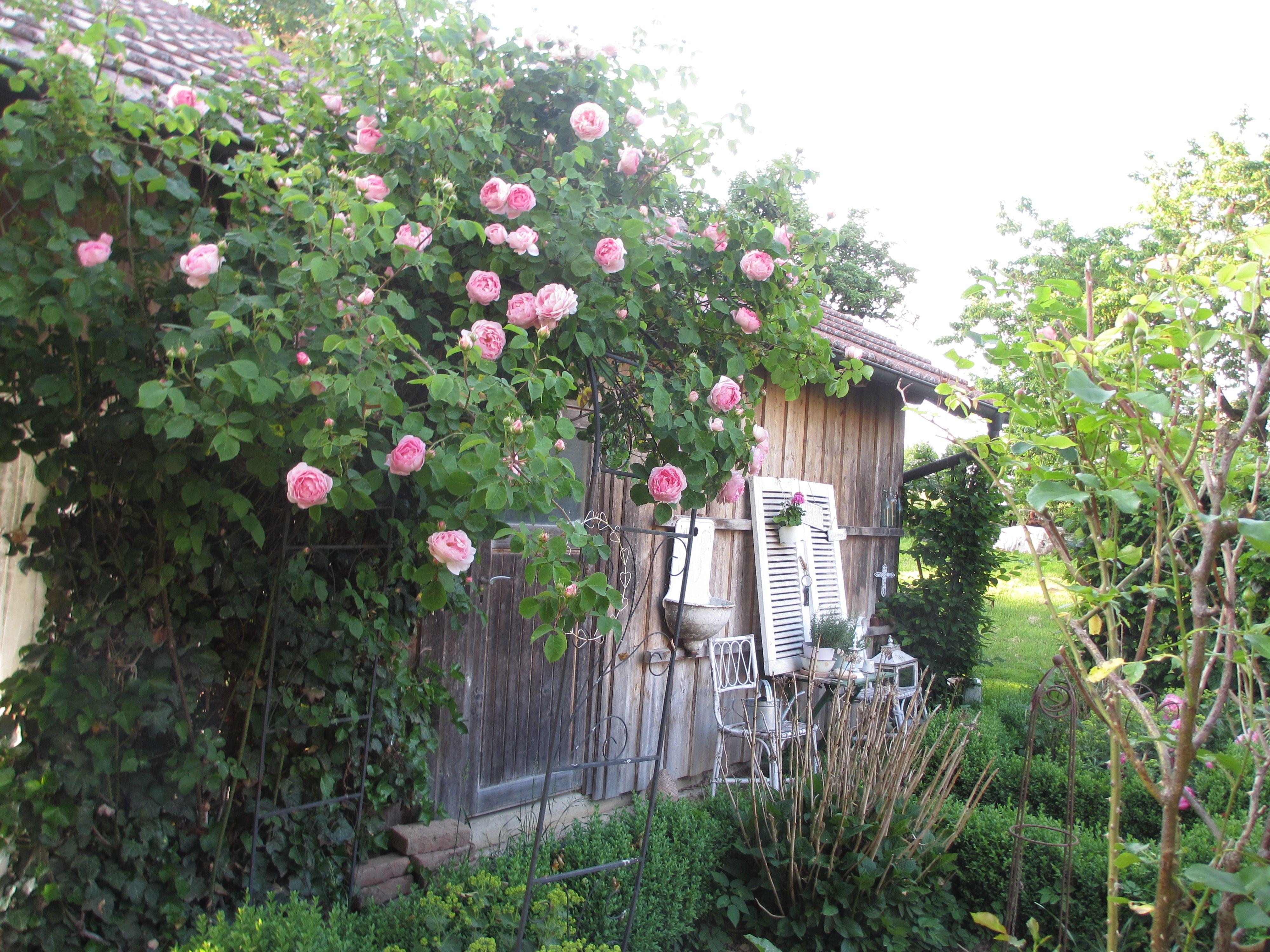 Kletterbogen Garten : Kinderkletterbogen bilder vicht