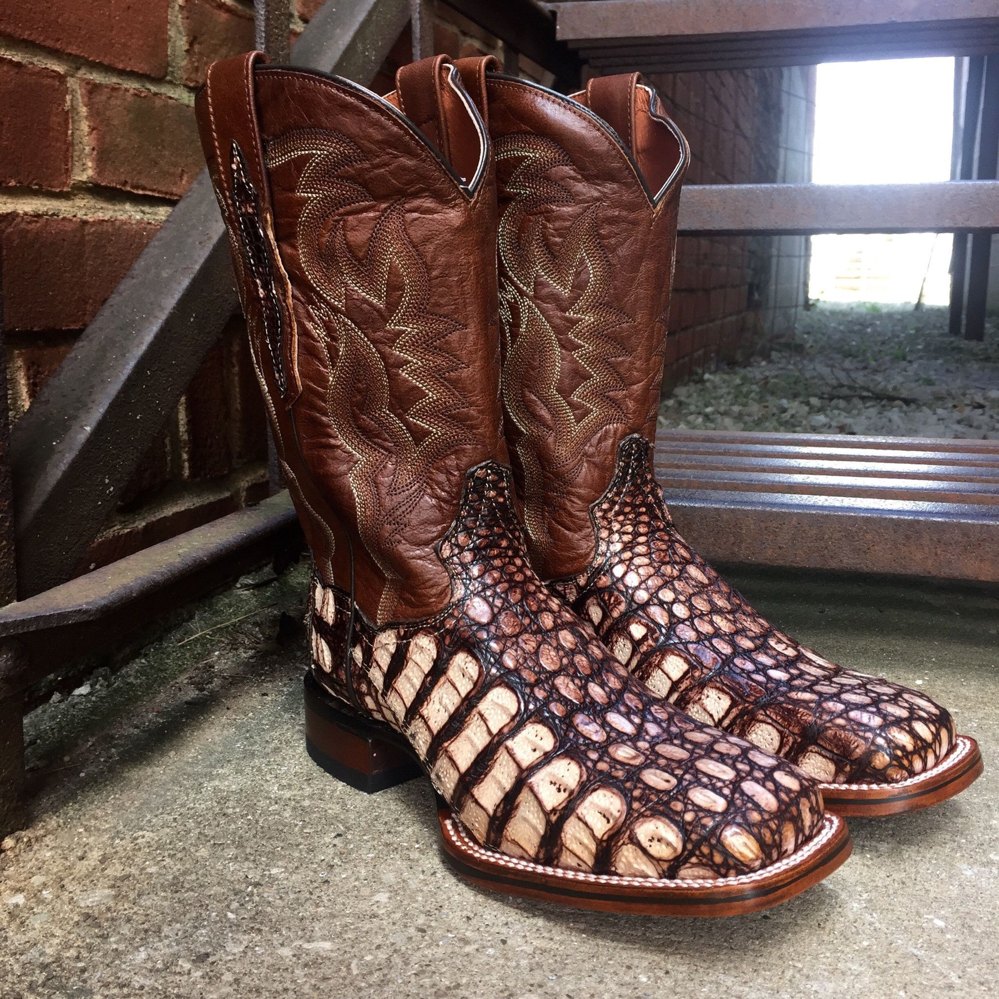 75840582203 Dan Post Cowboy Certified Women's Camel Everglades Flank Caiman ...