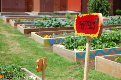 High yield gardening in small spaces