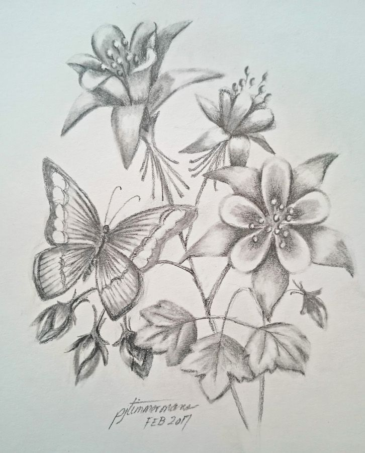Id rather be drawing columbine flowers and butterfly