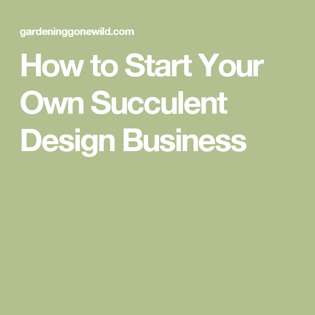 how to start your own succulent design business gems minerals