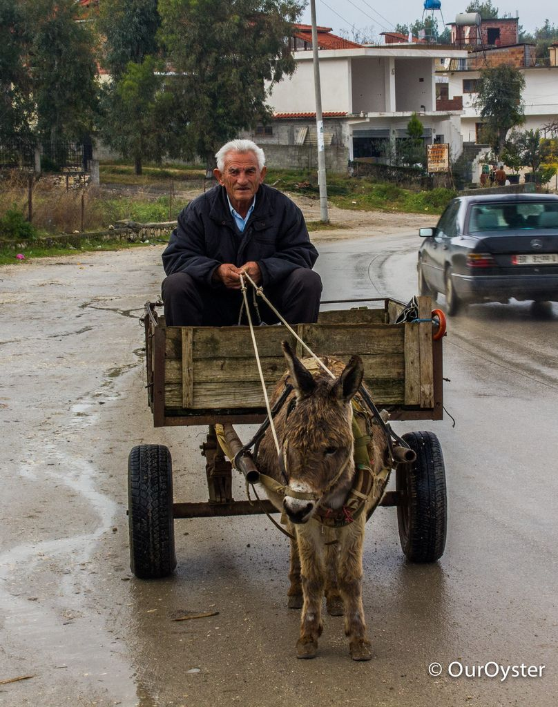 Image result for albanian man and donkey