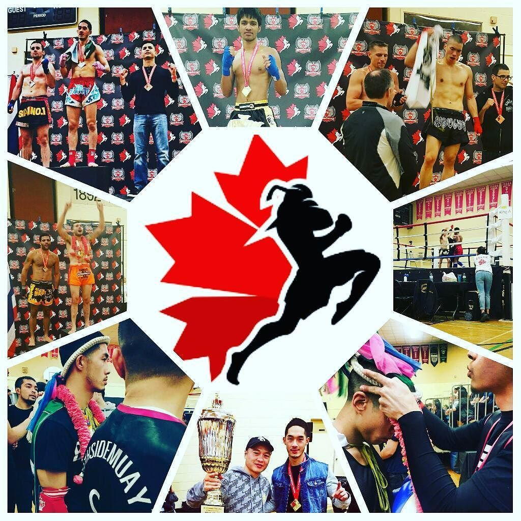 fd4f00fe04 Here is a collage from this weekend s  muaythaicanada  qualifiers   tournament in Toronto.