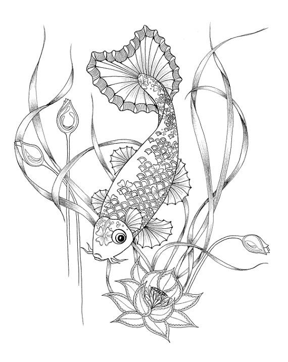 Coloring Pages for adults Digital download of a Koi fish for