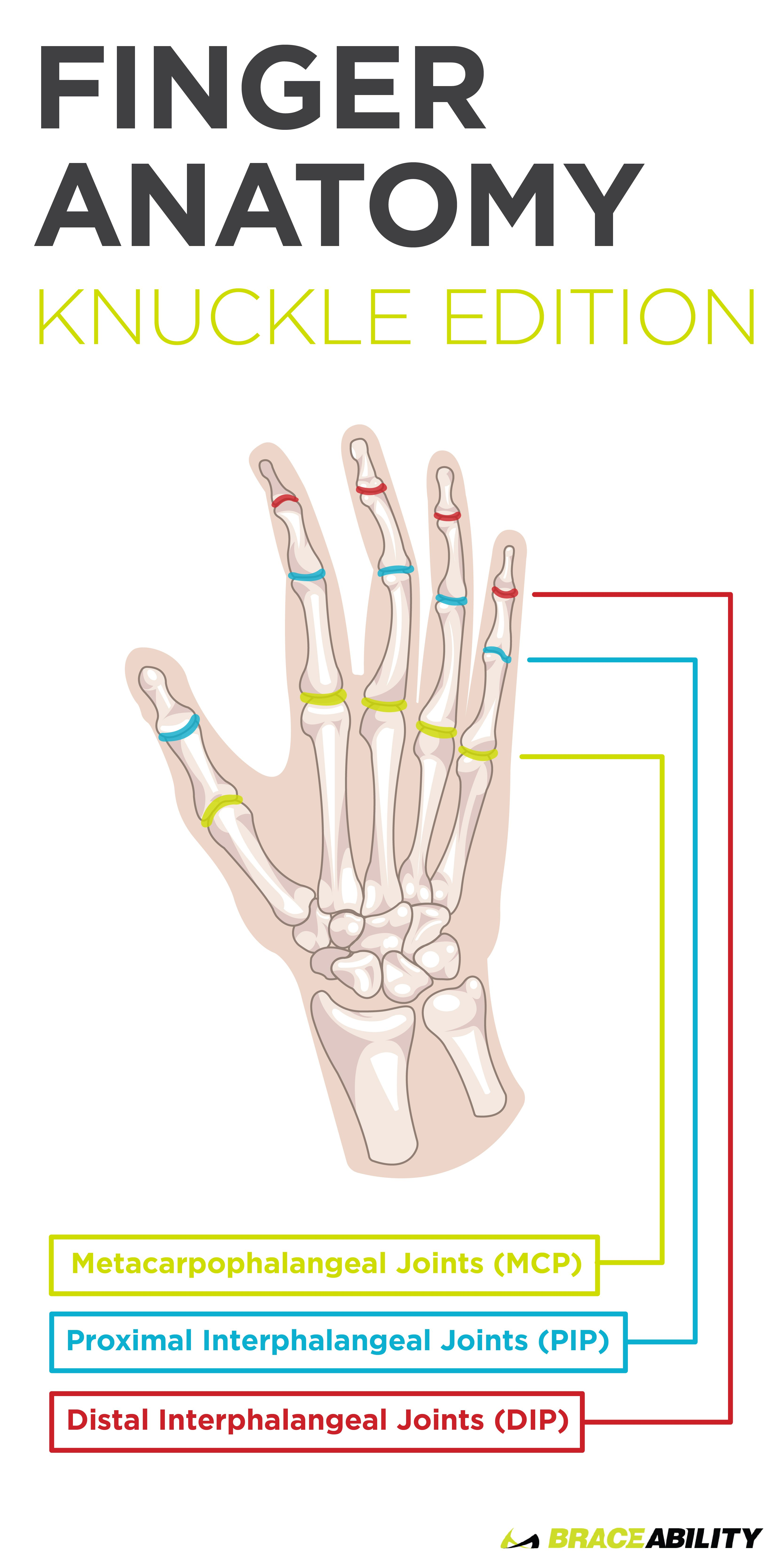 Your Finger Joint Pain is Probably Caused by Arthritis | Finger ...