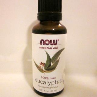 four simple ways to use eucalyptus oil for hair growth
