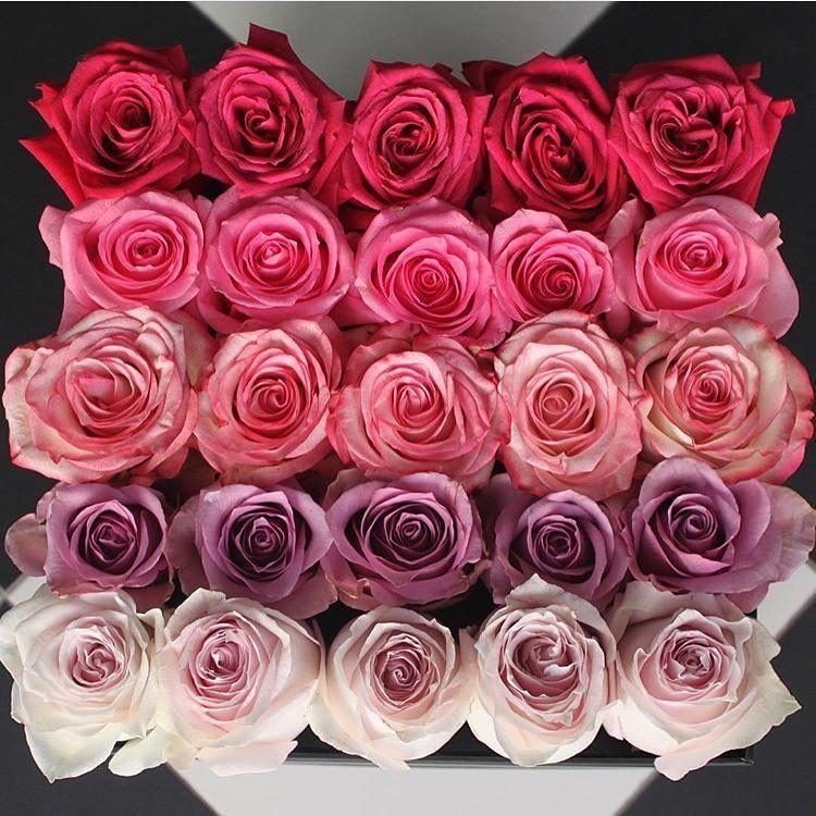 For offers/Реклама  direct  #flowersinspiration