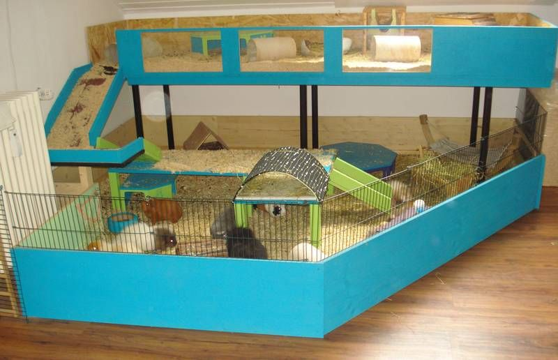 http meerschweinchen von den gruenen guinea pig cage. Black Bedroom Furniture Sets. Home Design Ideas