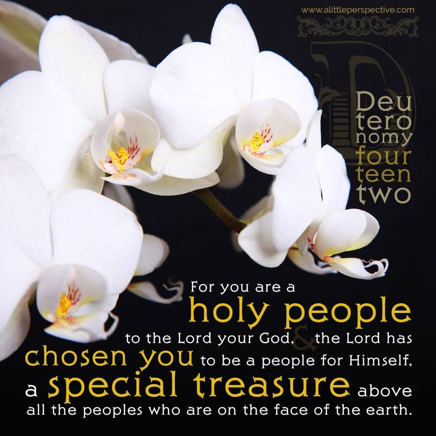 Deuteronomy for israel what your not taught pinterest