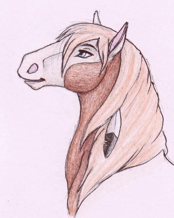 Drawings of rain the horse google search artistic - Comment dessiner spirit ...