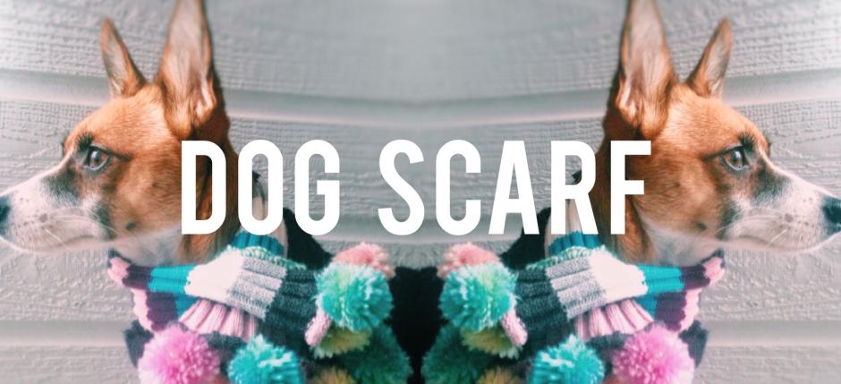 DIY make a cute dog scarf.