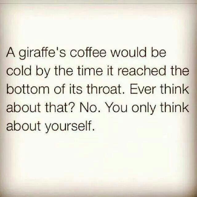 A giraffe's coffee