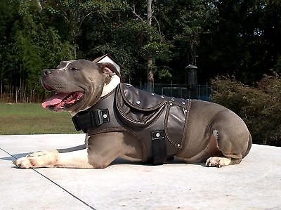 High Quality Leather Dog Coat Jacket Collar Harness Brown Pitbull