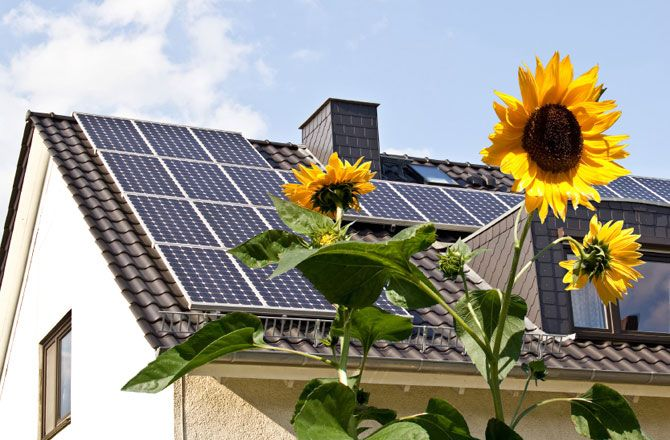 6 Reasons To Upgrade To Rebelmouse From Wordpress With Images Solar Solar Panels For Home Solar Panels