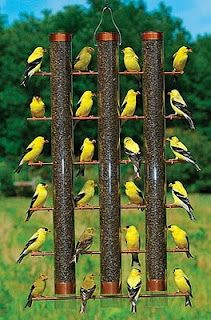 feeder clean finch large bird birds wild bottom with birdfeeder quick unlimited products feeders