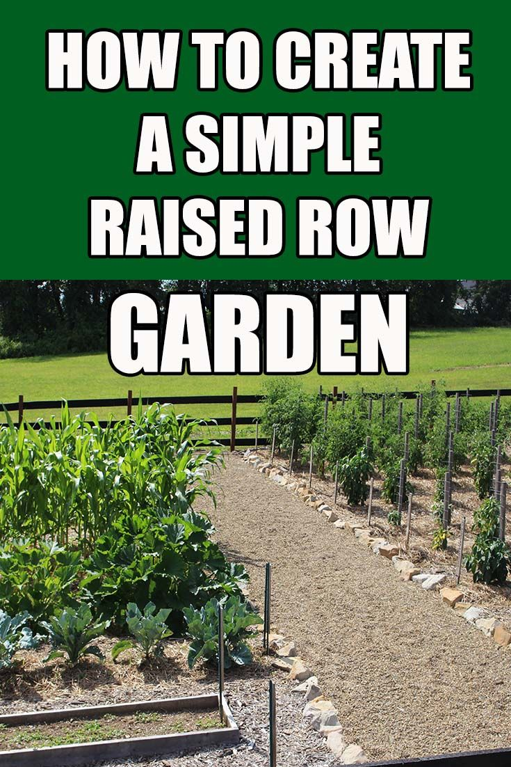 how to create a simple weed free and easy care vegetable garden rh pinterest ch