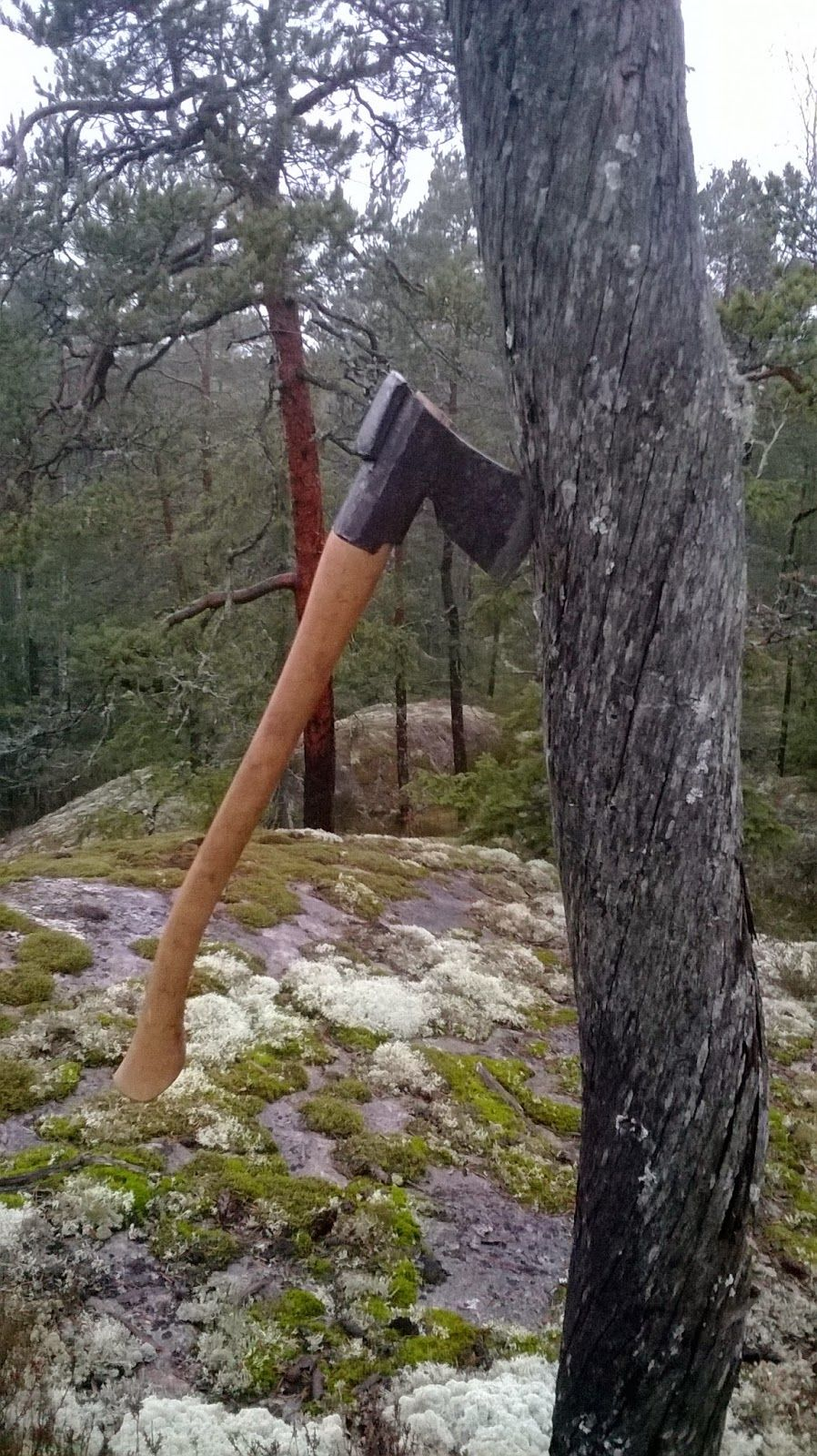 I felt compelled to write another piece about the Finnish axe. This time the whole article is about a single event; the Finnish national ...