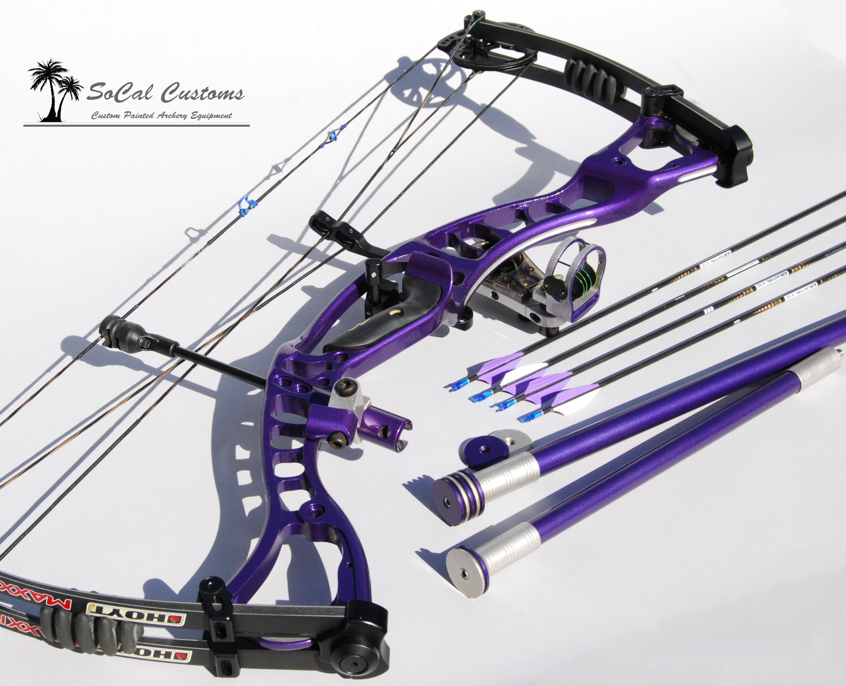 Hoyt custom PURPLE compound bow, my daughter would love this