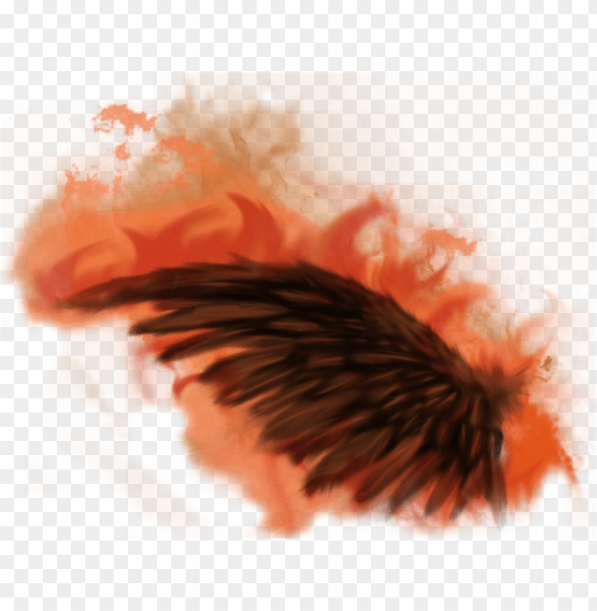 Fire Wing Png Fire Wings Png Transparent Png Image With Transparent Background Png Free Png Images Wings Png Free Png Png Images