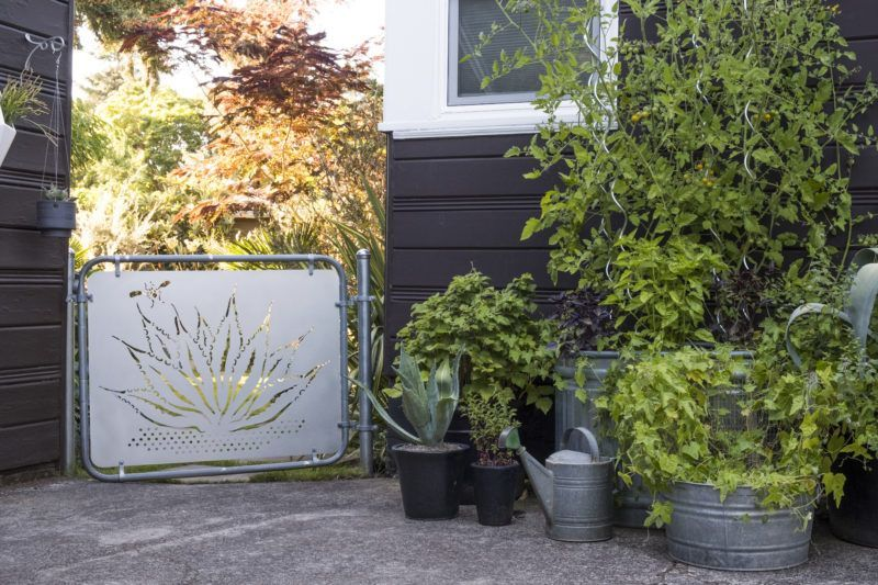 Enter At Your Own Risk Leaving Not Much To The Imagination This Portland Oregon Garden Gate