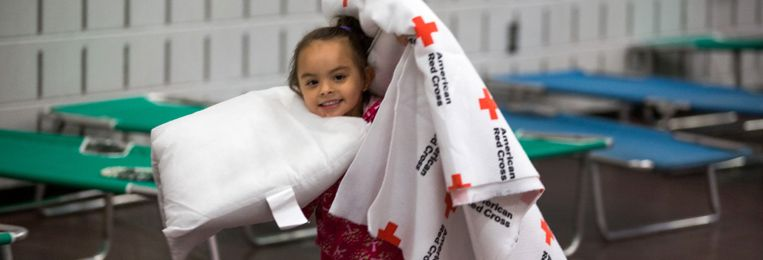 After a night of damaging storms across the Metroplex, the American Red Cross is launching a region-wide response that will cover Ellis, Dallas, Collin, and other counties.  SHELTER LOCATIONS:  ROWLETT:  Steadham Elementary School, 6200 Danridge Road, Rowlett, Texas  MIDLOTHIAN:  Longbranch Elementary, 6631 FM 1387, Midlothian, TX  GARLAND:  Gale Field Recreation Center, 1701 Dairy Road, Garland, Tx