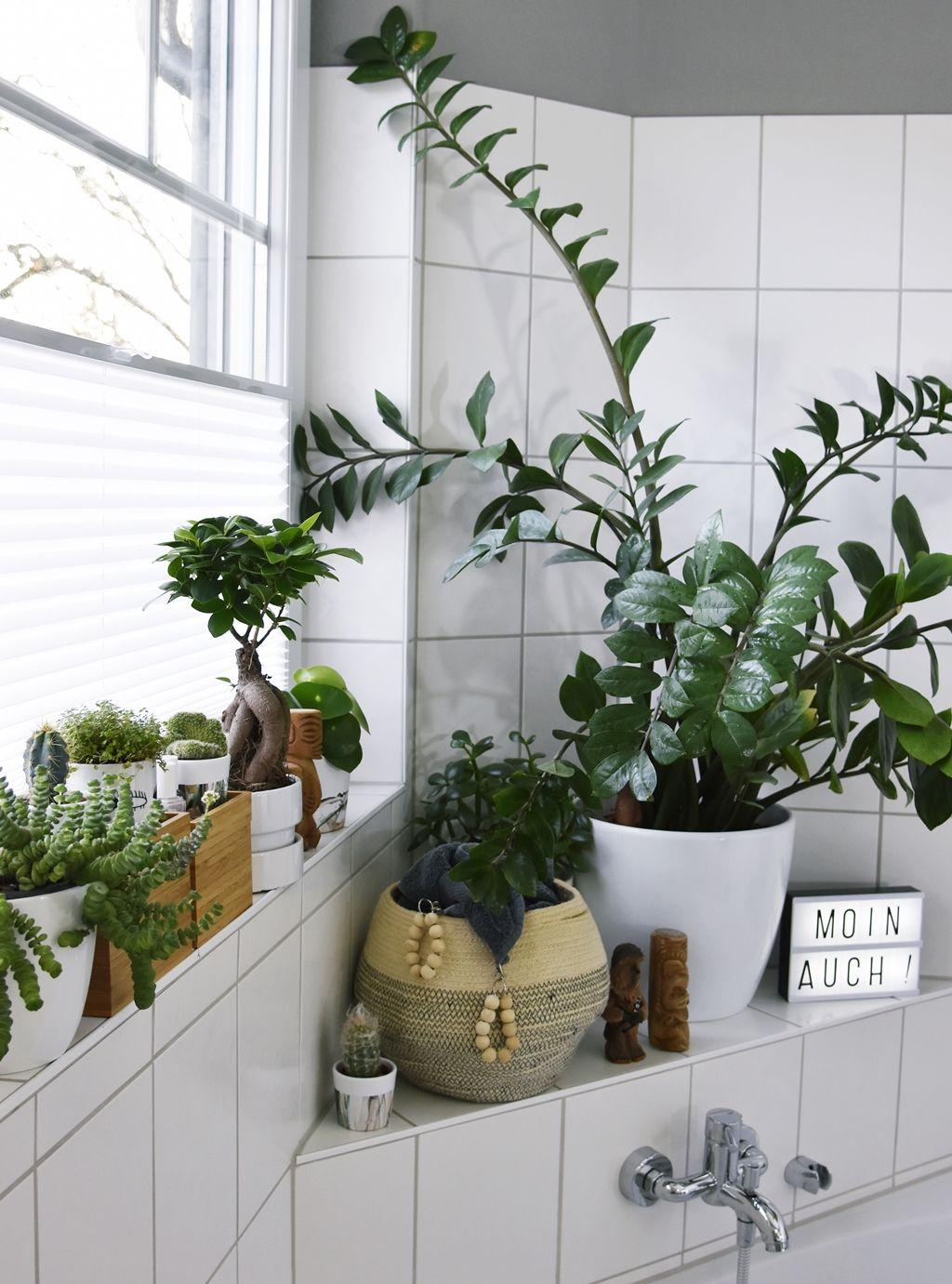 Licht Fur Den Urban Jungle Kleines Badezimmer Makeover Mit Plissee
