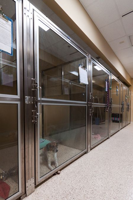 Extra Wide Glass Doors Photo Gallery Veterinary Housing