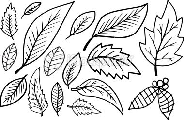 40 Best Leaves To Doodle Images Art Art Inspiration Doodle Art