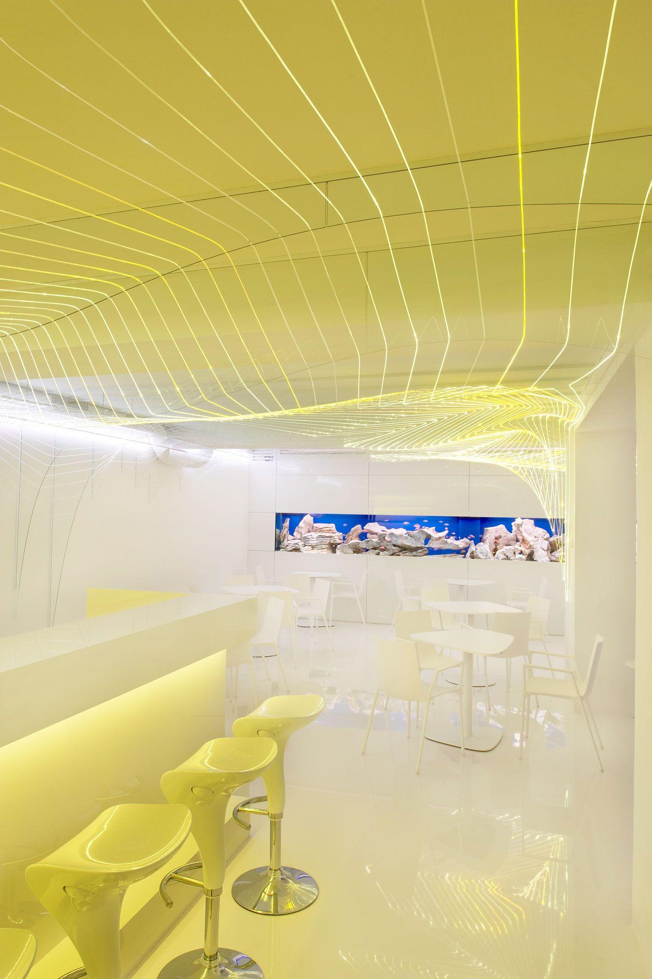 Gallery of bar aquarium next level studio 13