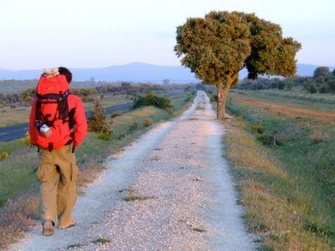 El Camino De Santiago Guida Completa 44 Min Ideas Camino De Santiago Santiago De Compostela Und Camino