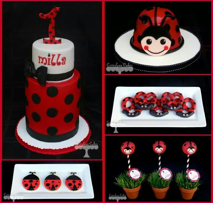 Lady bug cake, cake pops, choc covered pretzels, cookies
