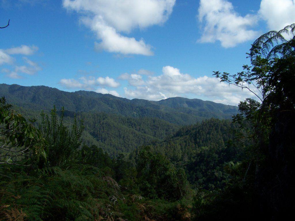 Armando Bermudez National Park
