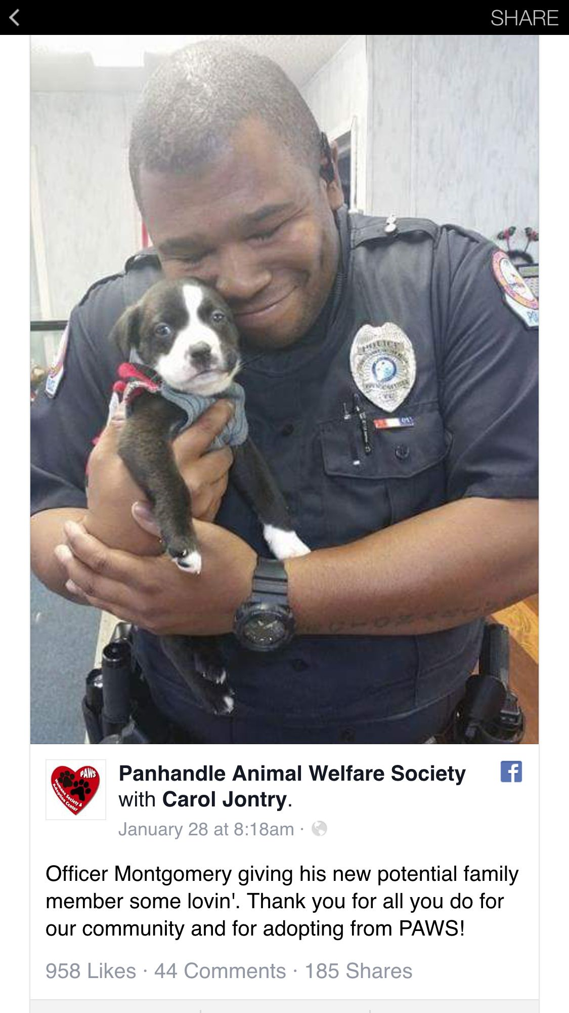 So Freaken Awesome Animal Welfare Society Dogs Puppies
