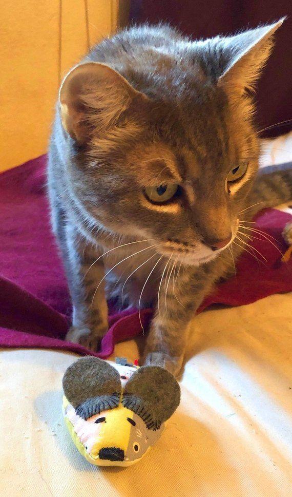 Fabric Organic Catnip Toy Mice Cute Cats Kittens Cat Allergies