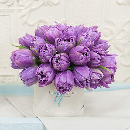 Фиолетовые тюльпаны в коробке Baby | цветы | Flower ... Фиолетовые Тюльпаны