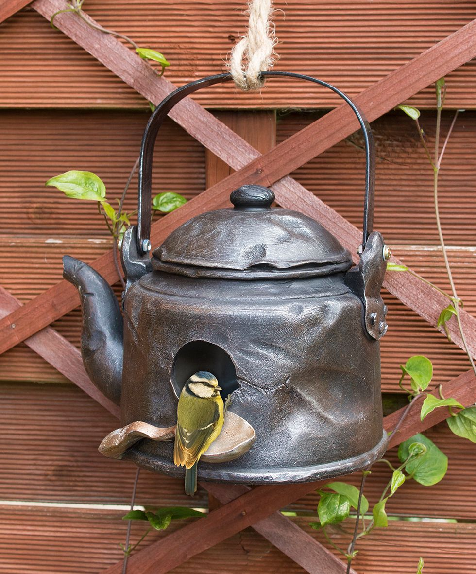 Attract birds to your garden with a birdhouse with a