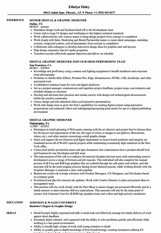 20 Senior Graphic Designer Resume Graphic design resume