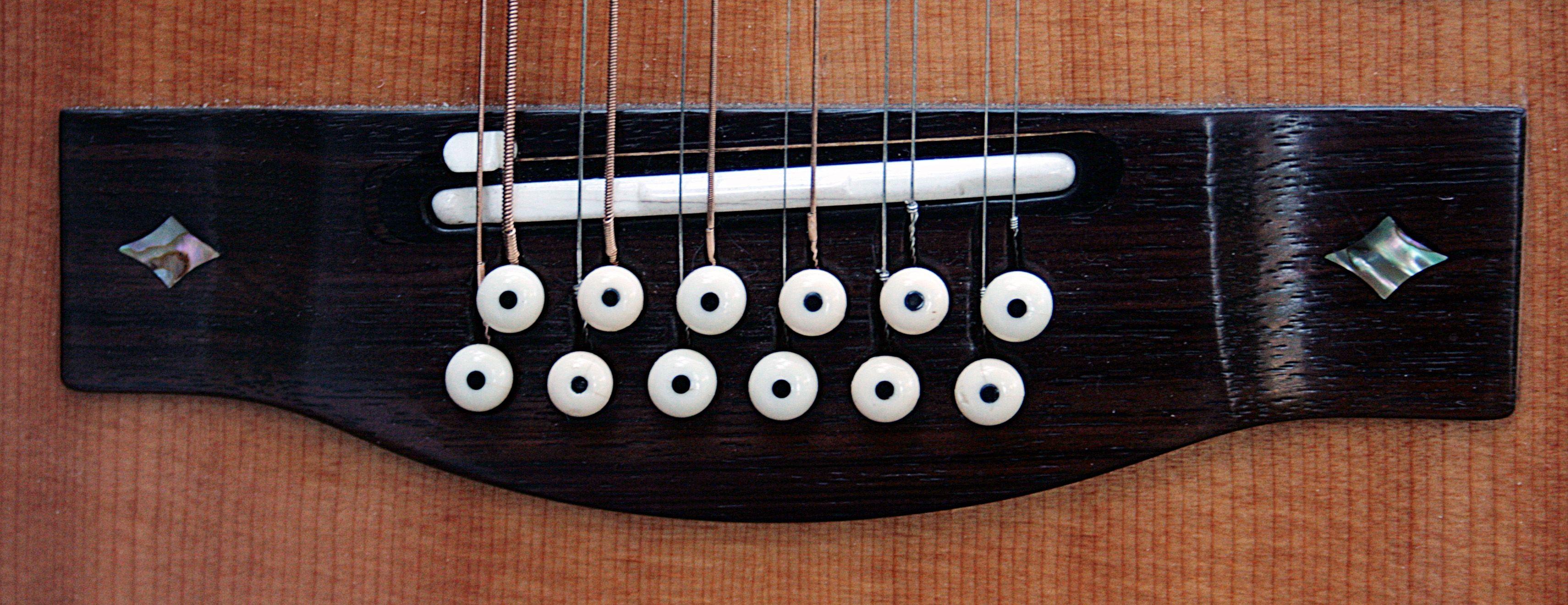 Takamine Split Saddles Cool Guitar Guitar Acoustic Guitar