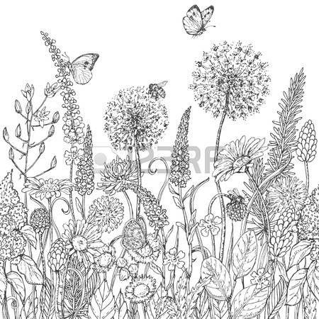 wildblumen hand nahtlose linienmuster mit wildblumen und insekten gezeichnet schwarze und. Black Bedroom Furniture Sets. Home Design Ideas