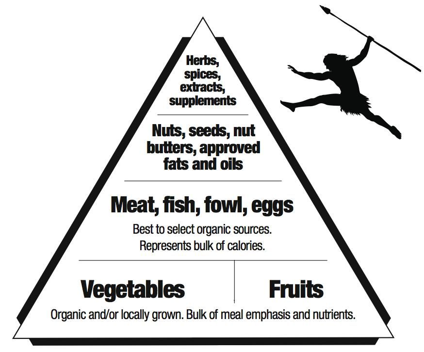 Primal, Paleo or SANE pyramid they way it should be Miss PVu0027s - best of blueprint diet food list