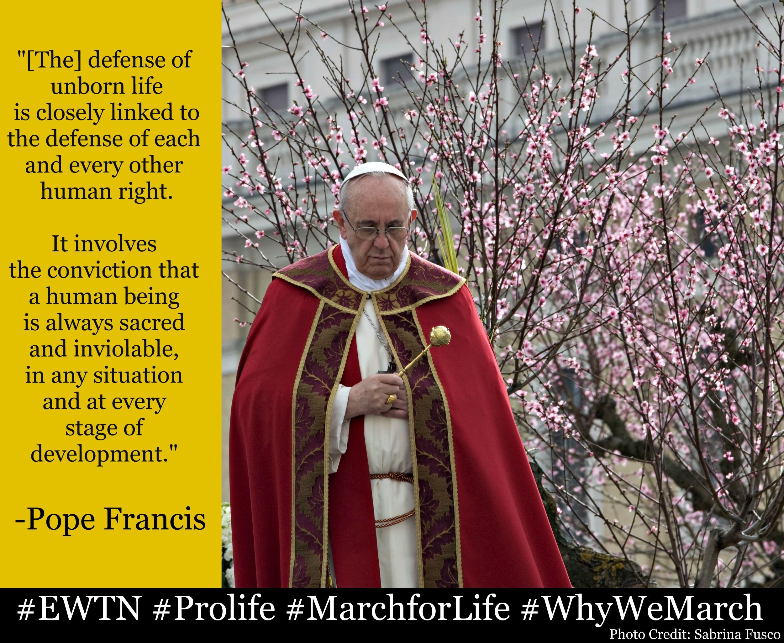 Share Pope Francis' answer to #WhyWeMarch and tell us your own! #EWTN's exclusive LIVE coverage of the #MarchforLife begins at 9 a.m. ET, Wednesday, Jan. 22!