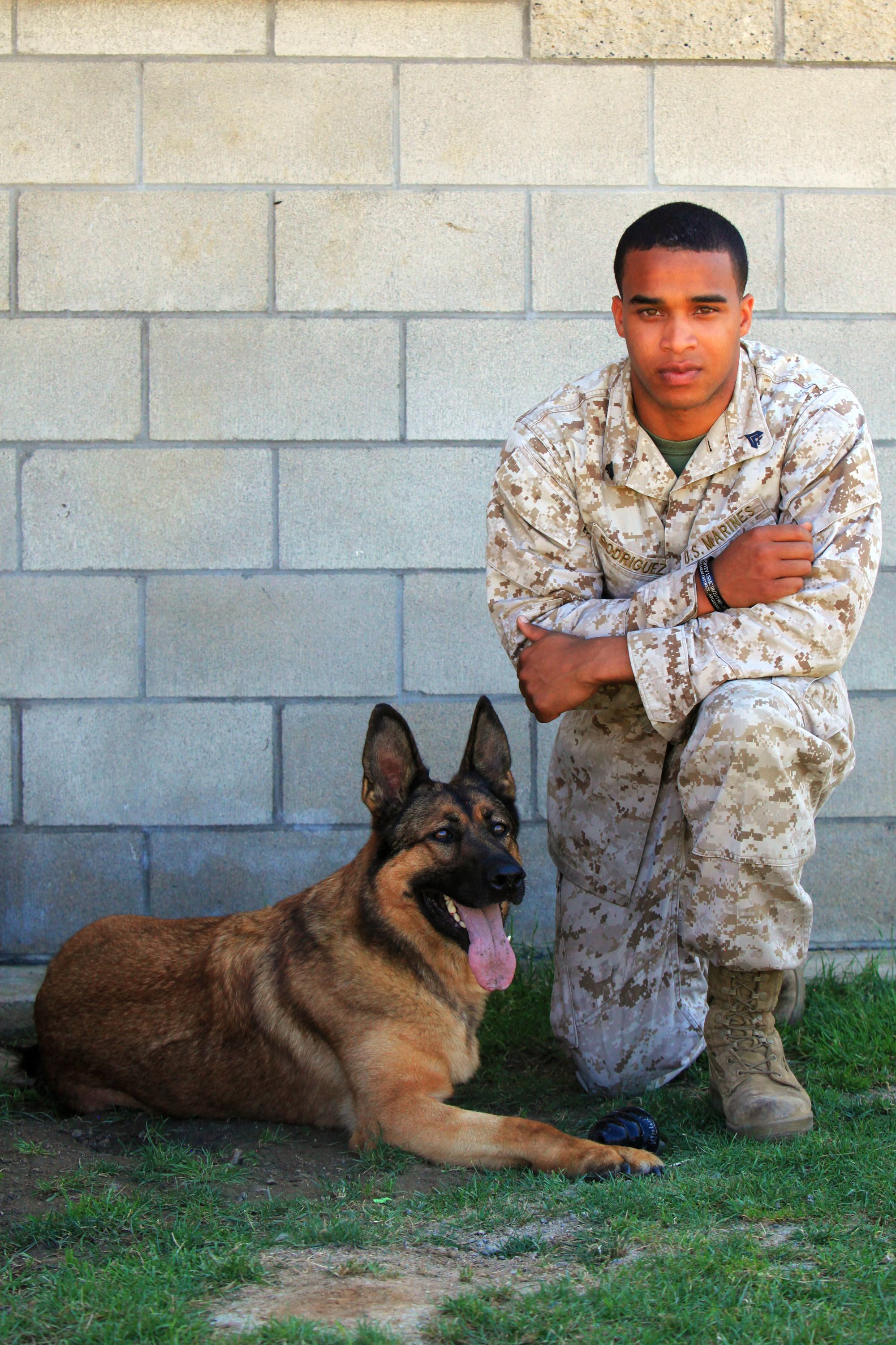 Lucca with 2nd handler Juan Rodriguez Military dogs