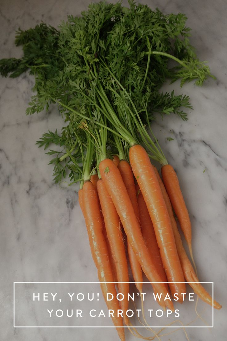 Hey, You! Don't Waste Your Carrot Tops