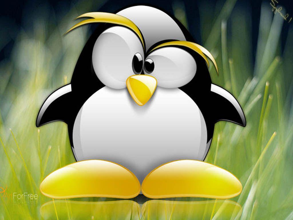 Incredibly Cute Penguins [ Photos